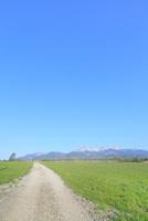 草原に道と八ヶ岳