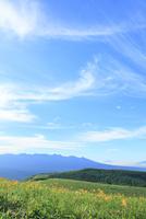 霧ヶ峰高原 キスゲの花と八ヶ岳・富士山