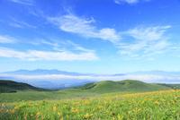 霧ヶ峰高原 キスゲの花と南アルプス・中央アルプス