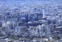 将軍塚から望む京都市街
