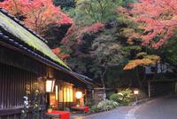 嵯峨野・愛宕街道 鮎茶屋の秋