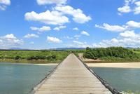 流れ橋・上津屋橋と木津川