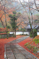 紅葉の吟松寺