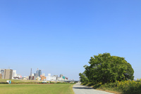 河川敷と街並み 11076013423  写真素材・ストックフォト・画像・イラスト素材 アマナイメージズ
