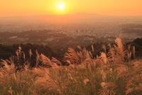 秋の若草山より奈良市街と夕日 11076013466| 写真素材・ストックフォト・画像・イラスト素材|アマナイメージズ