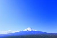 河口湖より富士山