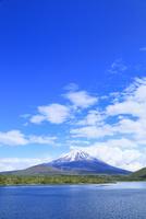 新緑の本栖湖より富士山 11076013582| 写真素材・ストックフォト・画像・イラスト素材|アマナイメージズ