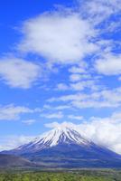 新緑の本栖湖より富士山 11076013583| 写真素材・ストックフォト・画像・イラスト素材|アマナイメージズ