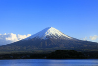 新緑の河口湖より富士山