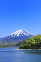 新緑の本栖湖より富士山 11076013639| 写真素材・ストックフォト・画像・イラスト素材|アマナイメージズ