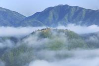 雲海たなびく竹田城