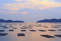 虫明湾の夜明け 11076014328| 写真素材・ストックフォト・画像・イラスト素材|アマナイメージズ