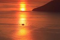 備讃瀬戸の夕景 女木島  11076014516| 写真素材・ストックフォト・画像・イラスト素材|アマナイメージズ