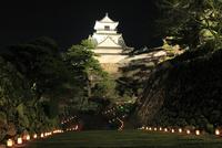高知城のライトアップ