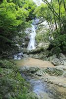 塩江不動の滝 11076014599| 写真素材・ストックフォト・画像・イラスト素材|アマナイメージズ