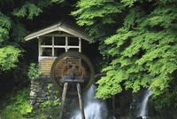 半田岩の水車小屋と渓流