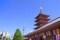 浅草寺五重塔と東京スカイツリー