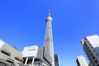 東京スカイツリーと東京ソラマチ