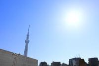 東京スカイツリーと太陽 11076014704| 写真素材・ストックフォト・画像・イラスト素材|アマナイメージズ