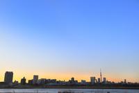 荒川より東京スカイツリーと朝焼け