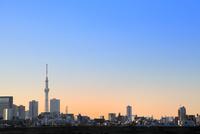 東京スカイツリーと朝焼け