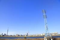送電線の鉄塔と東京スカイツリー
