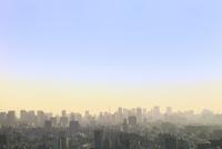 東京タワーとビル群の夕焼け