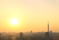 東京スカイツリーと夕日
