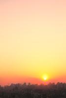 東京タワーとビル群に夕日