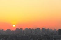 都心のビル群と夕日