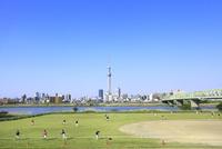 東京スカイツリーと荒川河川敷