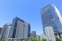 東京駅八重洲口前のビル群と新緑
