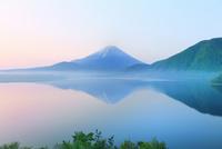 新緑の富士山と本栖湖に朝霧 11076014968| 写真素材・ストックフォト・画像・イラスト素材|アマナイメージズ