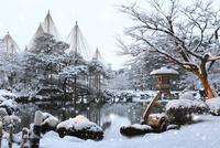 雪降る兼六園 ことじ灯籠 11076015045| 写真素材・ストックフォト・画像・イラスト素材|アマナイメージズ