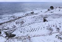 雪の白米千枚田 11076015059| 写真素材・ストックフォト・画像・イラスト素材|アマナイメージズ