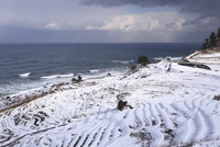 雪の白米千枚田 11076015060| 写真素材・ストックフォト・画像・イラスト素材|アマナイメージズ