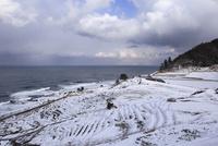雪の白米千枚田 11076015062| 写真素材・ストックフォト・画像・イラスト素材|アマナイメージズ