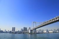 東京港よりビル群とレインボーブリッジ