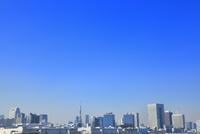 東京港より東京タワーとビル群