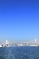 東京港よりレインボーブリッジと観光船