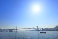 東京港よりレインボーブリッジと太陽 11076015228| 写真素材・ストックフォト・画像・イラスト素材|アマナイメージズ