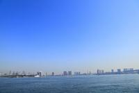 東京港よりビル群