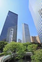 新宿副都心のビル群と新緑 11076015296| 写真素材・ストックフォト・画像・イラスト素材|アマナイメージズ