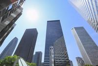 新宿副都心のビル群と新緑に太陽