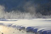 松川の霧氷 11076015349| 写真素材・ストックフォト・画像・イラスト素材|アマナイメージズ