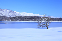 雪の青木湖と白馬三山