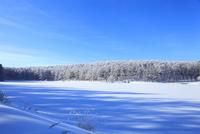 雪原と霧氷 11076015388| 写真素材・ストックフォト・画像・イラスト素材|アマナイメージズ