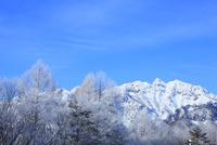 霧氷と戸隠西岳の冬景色