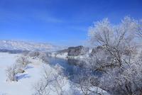 雪の千曲川と霧氷 11076015401| 写真素材・ストックフォト・画像・イラスト素材|アマナイメージズ
