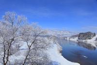 雪の千曲川と霧氷 11076015402| 写真素材・ストックフォト・画像・イラスト素材|アマナイメージズ